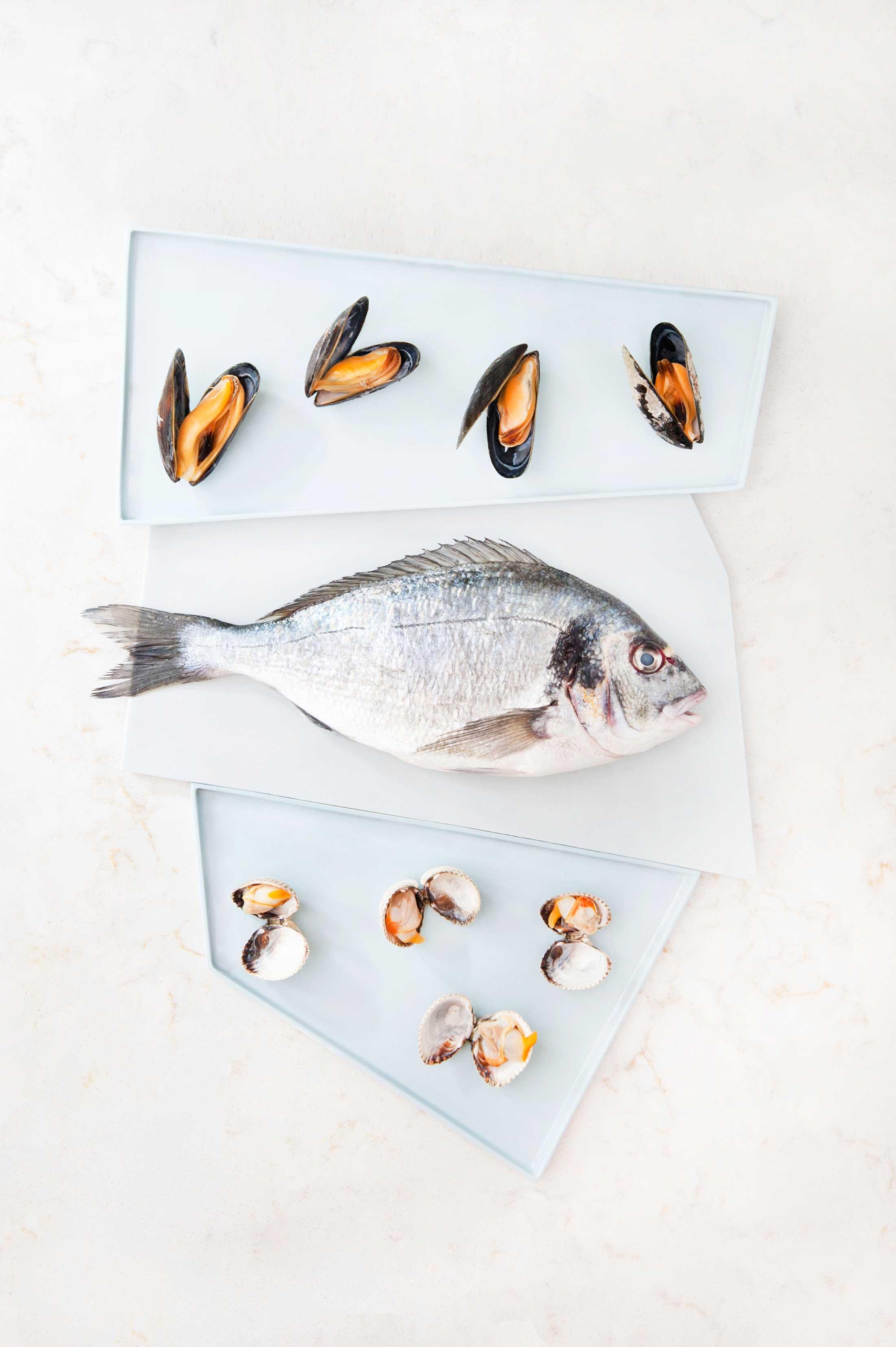 fish_site01